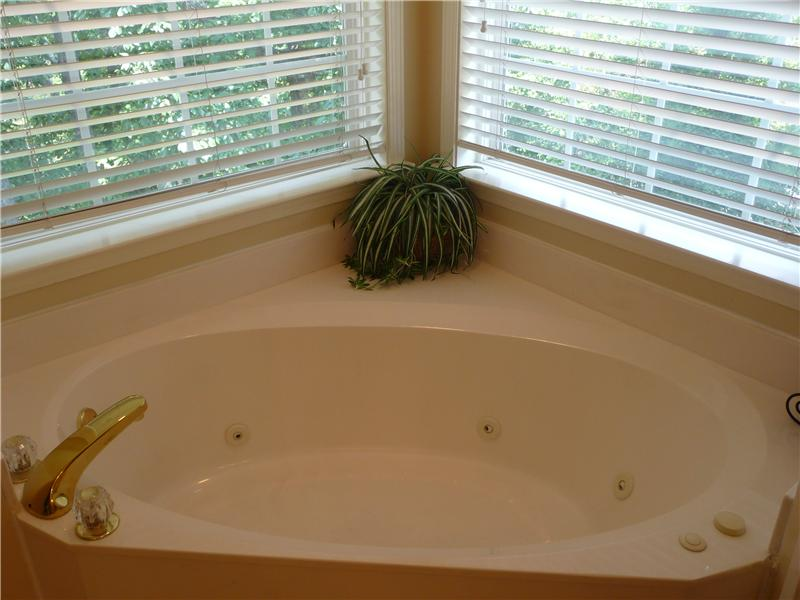 The jetted tub is surrounded by windows.