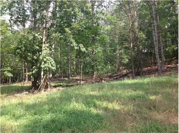 Lot 8, Old White Drive, Lewisburg, WV