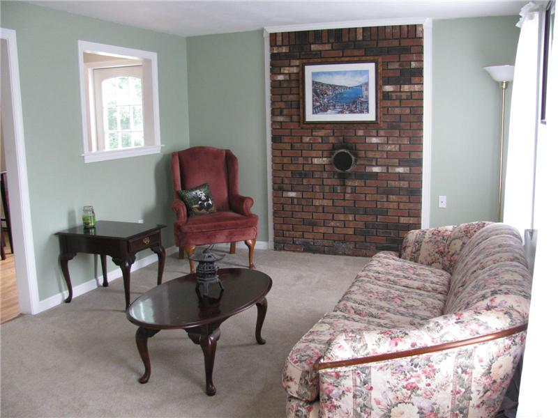 Brick Accent Wall with Wood/Pellet Stove HU